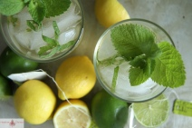 Iced-Citrus-and-Gin-Green-Tea