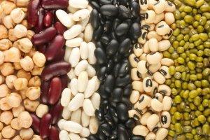 2e458a024fbc274e_beans_2.preview